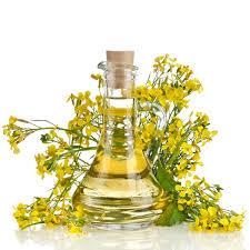 Химический состав масла из рыжиковых семян