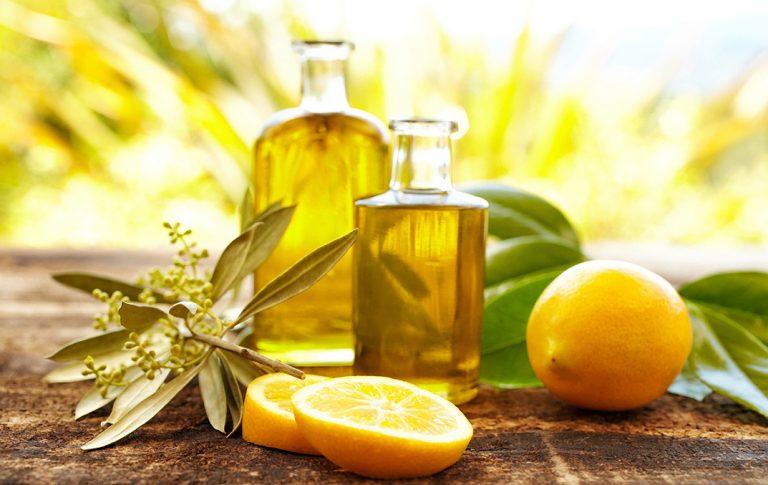 Вред и польза рыжикового масла, его применение