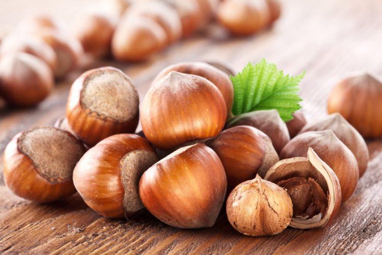 Польза и вред орехов фундук: сорта, свойства, выращивание
