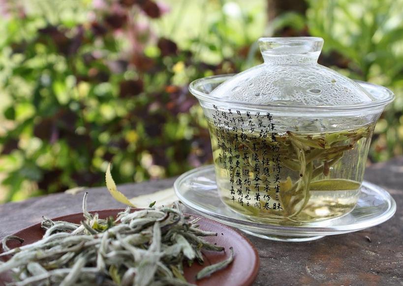 Белый чай: особенности производства и наиболее распространённые сорта этого напитка