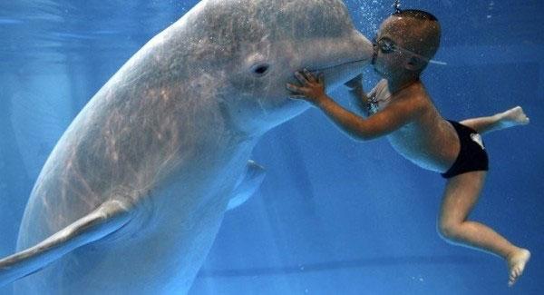 Страхи и предрассудки, мешающие взрослому человеку учиться плавать